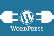 All you need to know if you are a Wordpress beginner
